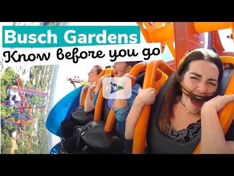 Busch Gardens: Know Before You Go
