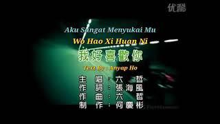 Liu Zhe - Wo Hao Xi Huan Ni 我好喜欢你 - 六哲 Piyin Karaoke L/R KTV + Terjemahan