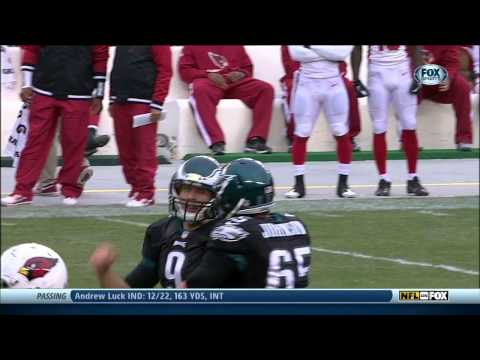 Hall of Fame - Nick Foles Highlights 2013