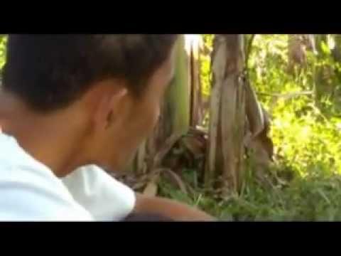 Florante at Laura Full Movie (Calumpang NHS, Nagcarlan, Laguna)