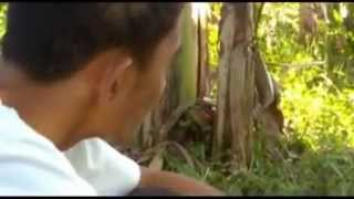Florante at Laura Full Movie (Calumpang NHS, Nagcarlan, Laguna)