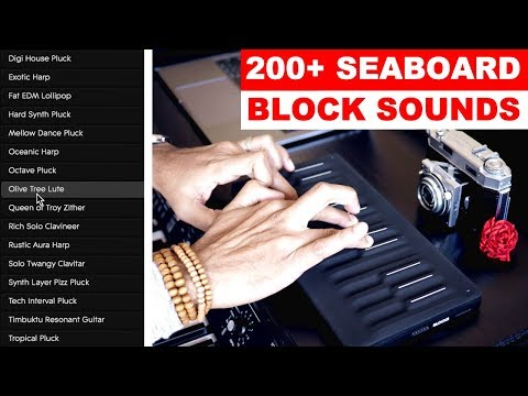 Repeat ROLI Tutorials: Seaboard Playing Techniques and