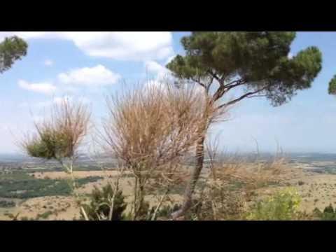 View from Castel del Monte- Andria Puglia