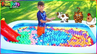 Toy Animals in a Ball Pit Pool for Kids with Jason