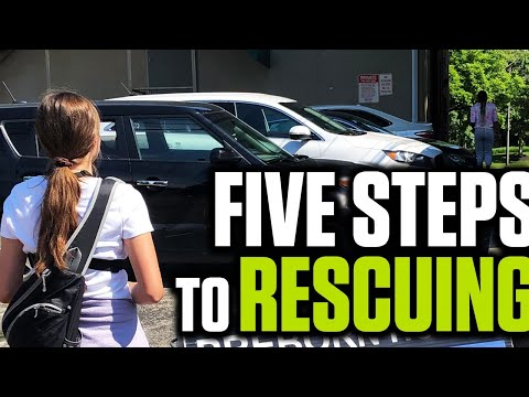 Five Steps to Rescuing: An Activist's Guide to Saving Lives | The Mark Harrington Show | 9-10-20