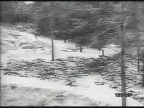 Katyn massacre in Soviet union. Horror.