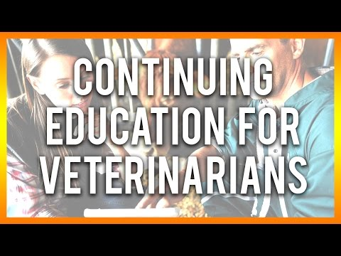 continuing-education-for-veterinarians---get-free-courses-below