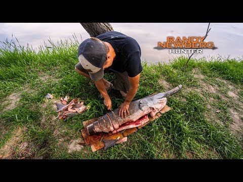 How To Clean & Cook A Paddlefish