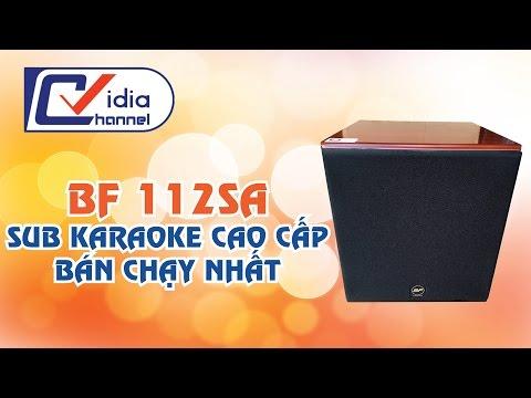 Vidia Channel - Loa sub karaoke cao cấp bán chạy số 1 hiện nay.