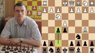 Шахматы. Как наигрывать дебют? Разбираем на примере гамбита Яниша