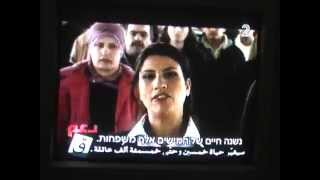 Israeli election campaign TV ads- how do they influence the vote?