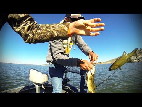 Milford lake smallmouth bass youtube for Milford lake fishing report