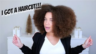 FINALLY Got a Haircut! Did I Find My New Stylist in Orlando?! | Natural Hair | Lyasia in the City