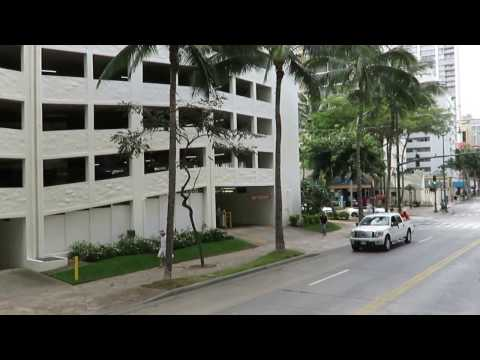 waikiki trolley pink line waikiki beach kuhio kalakaua hawaii honolulu 20170309 2