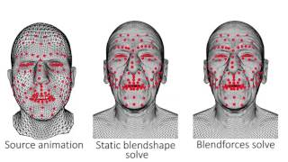 BlendForces: A Dynamic Framework for Facial Animation