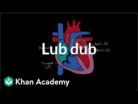 Lub Dub | Circulatory system physiology | NCLEX-RN | Khan Academy