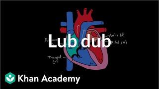 Lub Dub