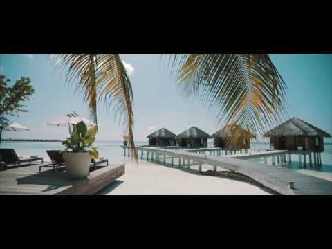 Maldives Cinematic Travel Film