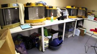 The Mammal Rearing Unit at Vale Wildlife Hospital