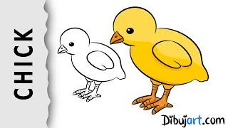 How to draw a baby Chick — Wie zeichnet man ein Küken