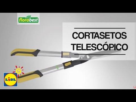 Cortasetos Telescópico - Lidl España