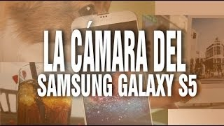 Samsung Galaxy S5 y sus espectaculares fotos