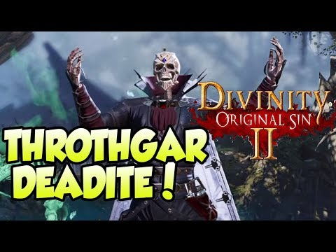 RPG NOOB PLAYS Divinity Original Sin 2 (#1)