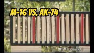 M16 A1 (5 56mm) vs  AK-74 (5 45mm)  [ Test Fire ]