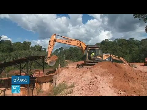 الذهب على حساب الأشجار في غويانا  - 12:00-2019 / 11 / 29