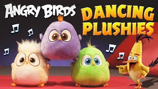 Angry Birds | Dancing Hatchlings Plushies!