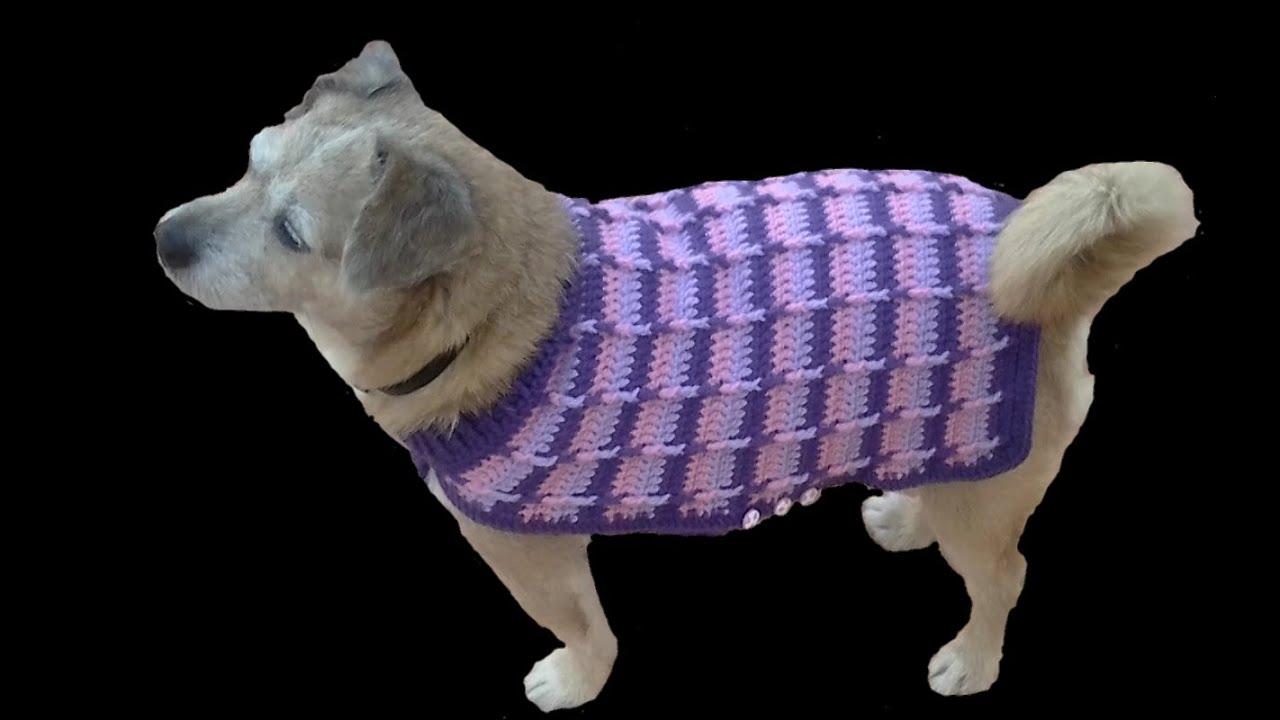 Como hacer un jersey para perro 2 ª parte tutorial - YouTube