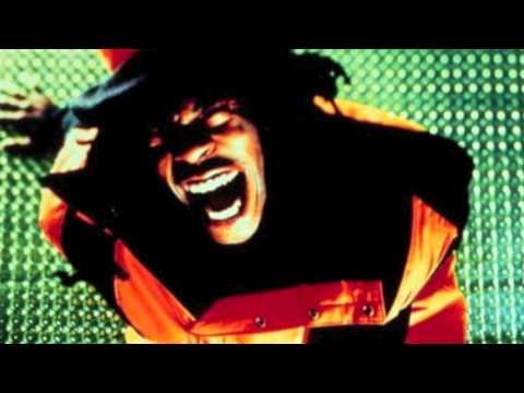 Busta Rhymes - Dangerous (BEST REMIX)