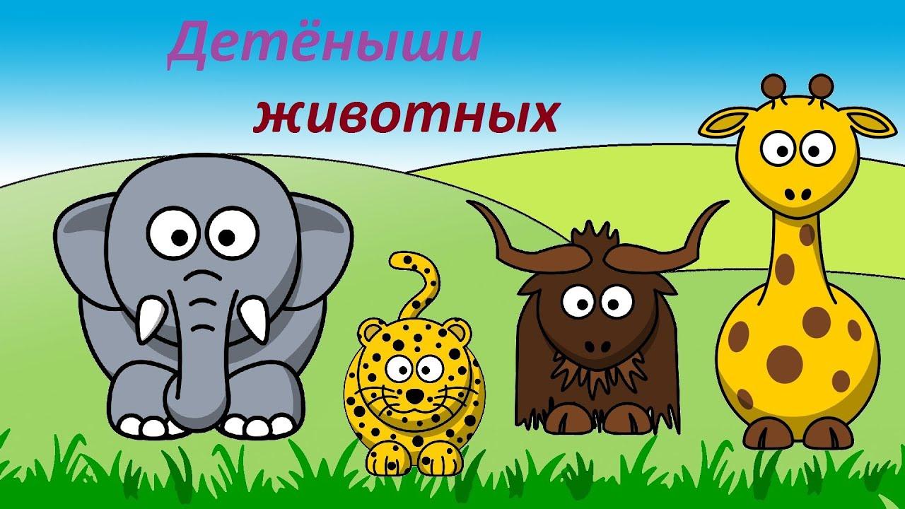 Мультфильм домашние животные 2016 смотреть онлайн