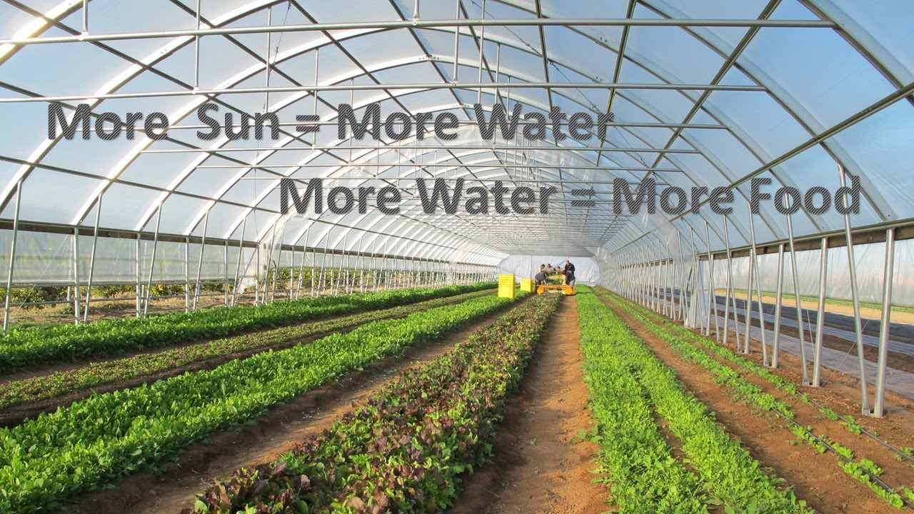 4e63bba872e4f High Tunnel Irrigation with Direct Drive Solar  Part 1 - YouTube