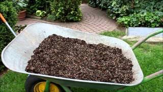 Rasen Problemzonen Teil 2 Löcher ausbessern - NewWonder555