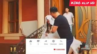Zaharli Tomchilar 43 2chi fasil (o'zbek serial) 2019
