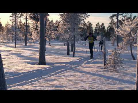 Skidorientering HD