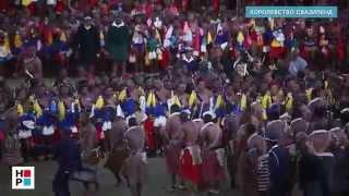 18+. Свазиленд. Смотрины королевских невест