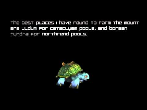 How To: Get The Rare Sea Turtle Mount [World Of Warcraft]