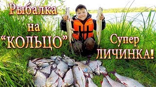 видео Рыбалка