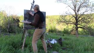 På jobb med maleren Jonny Andvik HD