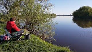 Первые КРУПНЫЕ ЛЕЩИ!! Фидер на Днепре. Природа завораживает. Рыбалка с ночёвкой. Лещ на фидер.