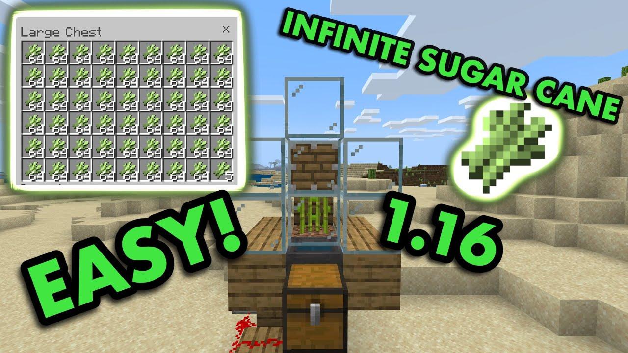 1 16 Zero Tick Sugarcane Farm Tutorial In Minecraft Bedrock Mcpe Xbox Ps4 Nintendo Switch Win10 Youtube