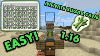 1.16 ZERO-TICK SUGARCANE FARM TUTORIAL in Minecraft Bedrock (MCPE/Xbox/PS4/Nintendo Switch/Win10)