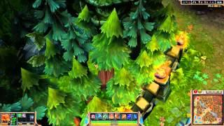 Jungle Wards