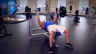 Жим штанги лежа | Упражнения для мышц груди