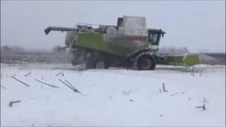 Zimowe żniwa w Rosji na 12 kombajnów – 8x Claas, 4x Rostselmash