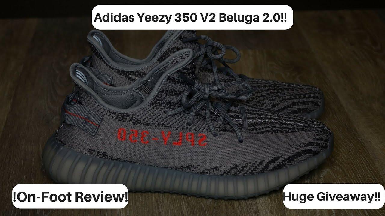 62c986abd8689 YEEZY 350 V2 BELUGA 2.0!!!! ON-FOOT REVIEW!!! HUGE GIVEAWAY ...