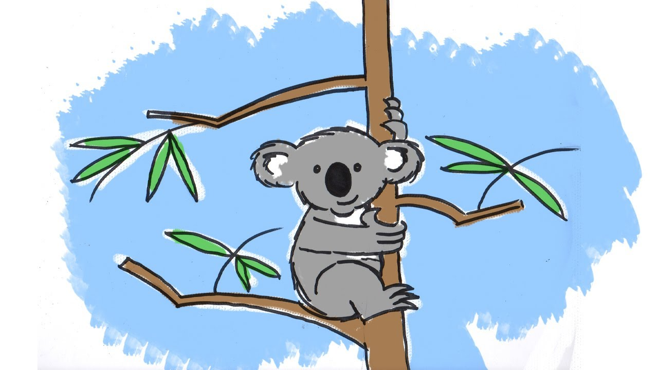 How To Draw A Cute Cartoon Koala Youtube Koalas pant in order to cool themselves, but hugging cool tree trunks means they don't have to waste precious water panting. how to draw a cute cartoon koala