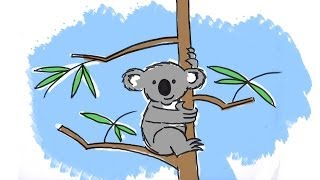 How to draw a cute cartoon Koala